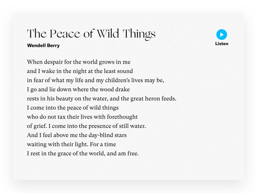 The Piece of Wild Things