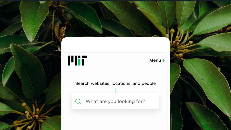 Tease hover image for MIT.edu