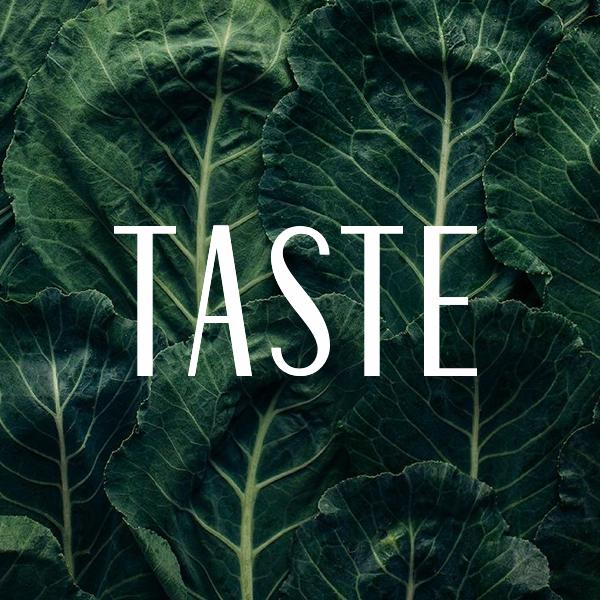 Tease image for Taste by Penguin Random House
